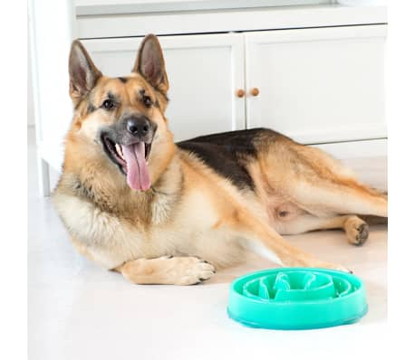 Outward Hound Mangeoire lente pour chiens Slo Bowl Sarcelle 1578[3/6]