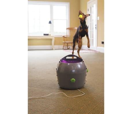 PetSafe Aut. kamuolių paleidėjas, 9m, pilkas ir violet., PTY00-14665[5/5]