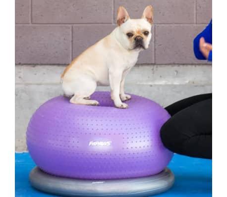 FitPAWS Balle d'équilibre pour animaux de compagnie TRAX Donut 55 cm[3/7]