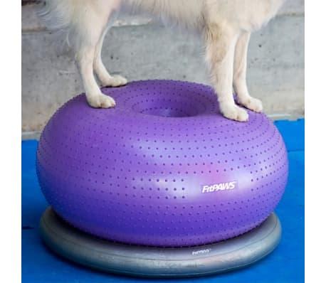 FitPAWS Balle d'équilibre pour animaux de compagnie TRAX Donut 55 cm[4/7]