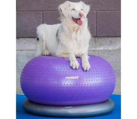 FitPAWS Balle d'équilibre pour animaux de compagnie TRAX Donut 55 cm[5/7]