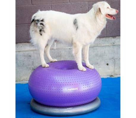 FitPAWS Balle d'équilibre pour animaux de compagnie TRAX Donut 55 cm[6/7]