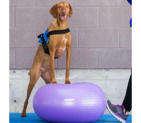 FitPAWS Balle d'équilibre pour animaux de compagnie TRAX Donut 55 cm[7/7]