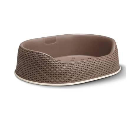 Curver Hundekorb 67x49x16 cm Mokka 700330[2/2]