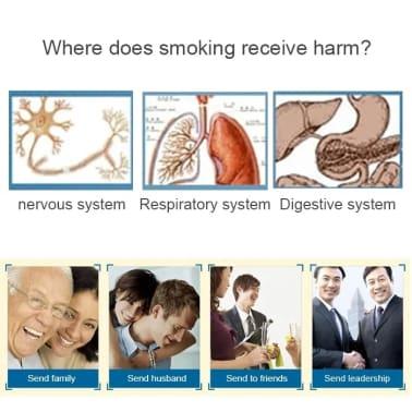 Boite à Cigarette Filtre recyclé de support pipe à eau tabac[4/4]