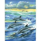 Tableau peinture au numéro Pour enfant Dauphins - KSG