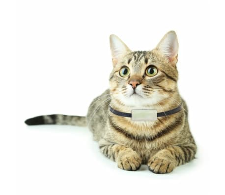 Weenect Traceur GPS pour chats Blanc 7811[6/9]