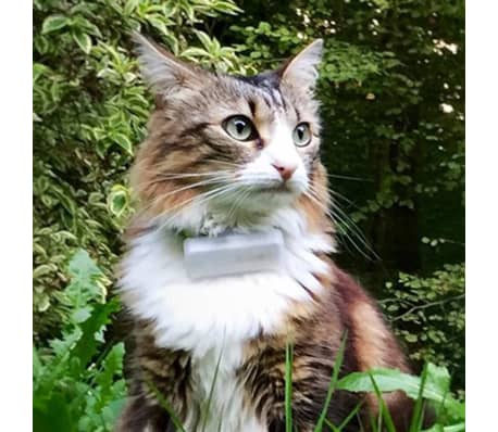 Weenect Traceur GPS pour chats Blanc 7811[8/9]