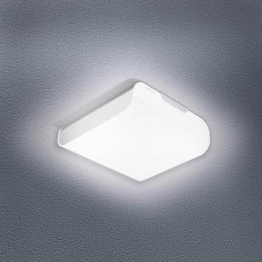 Steinel Lampe d
