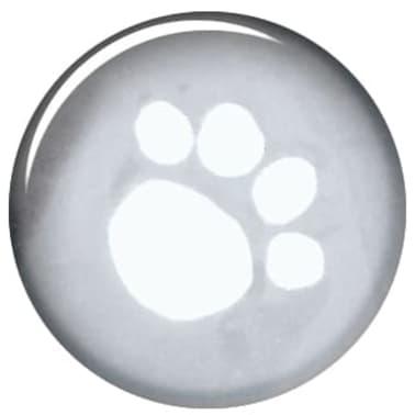 TRIXIE Imperméable pour chiens Tarbes S 42 cm PVC Transparent[3/4]