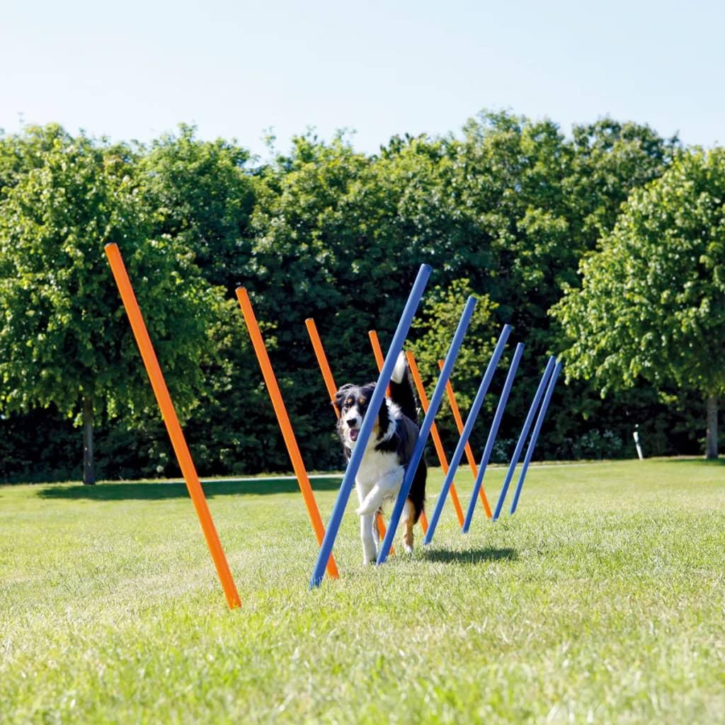 TRIXIE Behendigheid slalom-palen 12 stuks 115 cm kunststof 3206