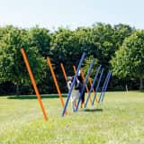 TRIXIE Postes de eslálom de agilidad 12 uds 115 cm plástico 3206