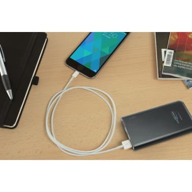 Ansmann Powerbank 5.4 5400 mAh 1700-0066[2/8]