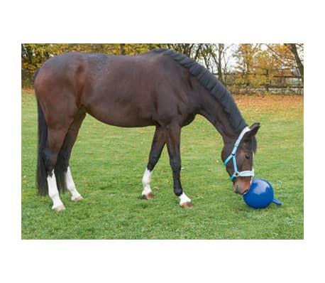 Kerbl Pferde-Spielball Blau 25 cm 32399[2/2]