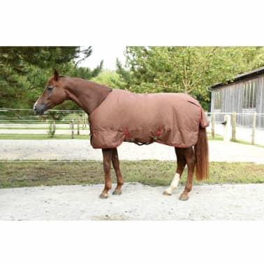 Kerbl Manta de caballo RugBe IceProtect 300g marrón 125/175 cm 328672[3/6]