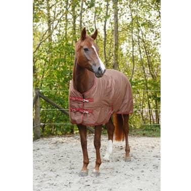 Kerbl Manta de caballo RugBe IceProtect 300g marrón 125/175 cm 328672[4/6]