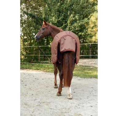 Kerbl Manta de caballo RugBe IceProtect 300g marrón 125/175 cm 328672[5/6]