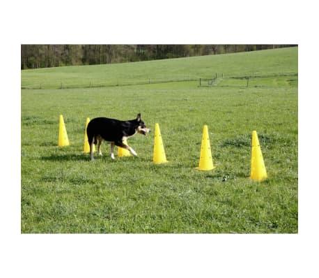 Kerbl Ensemble de cônes-obstacles d'agilité Jaune 81994[7/7]