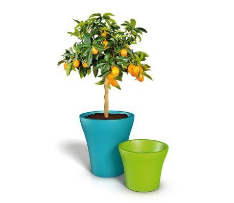 acheter pot de fleurs style fit blanc pas cher. Black Bedroom Furniture Sets. Home Design Ideas