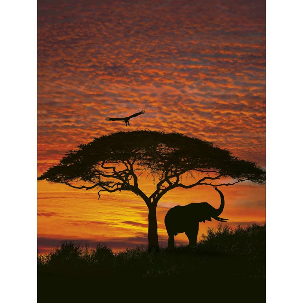 Komar Fototapet mural National Geographic African Sunset 194 x 270 cm vidaxl.ro