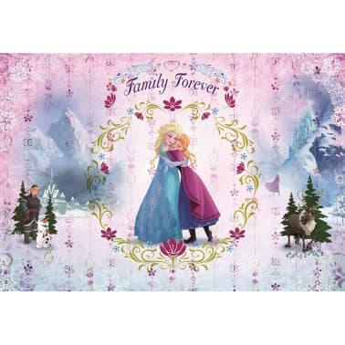 Komar Fotomurale Disney Frozen Family 368x254 cm 8-479[1/2]