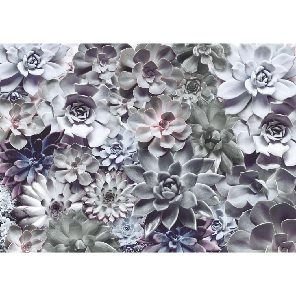 Duża, piękna i kolorowa fototapeta Shades marki Komar przedstawia sukulenty w pastelowych kolorach oraz stanowi prosty sposób na ożywienie pokoju i podkreślenie własnego stylu wnętrza.