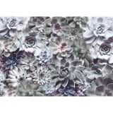 Komar Fototapeta Shades, 368 x 254 cm, 8-962