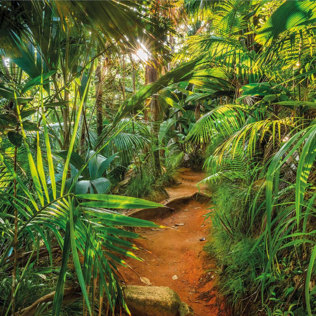 Komar Fototapet mural Jungle Trail, 368 x 254 cm vidaxl.ro