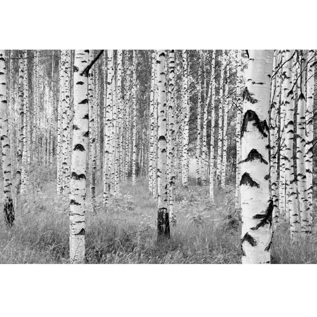 Komar Fototapet mural Woods, 368 x 248 cm, XXL4-023 vidaxl.ro