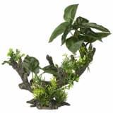 Aqua d'ella Aquariumpflanze Flora Scape 2 Größe L 234/432068