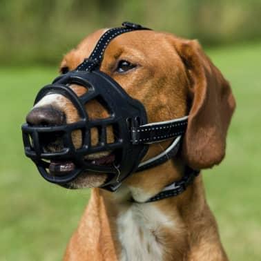 Trixie Bozal de cuero para perros