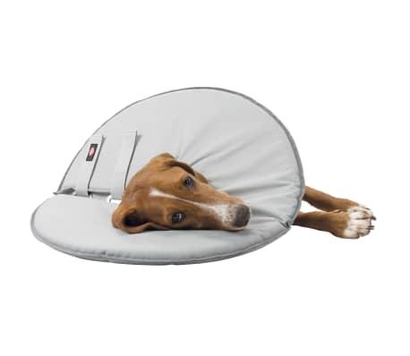 TRIXIE Collier de protection pour animaux de compagnie XS 13 cm[9/9]