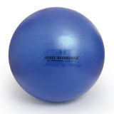 Sissel Exercise Ball Securemax Professional 55 cm Blue SIS-160.050