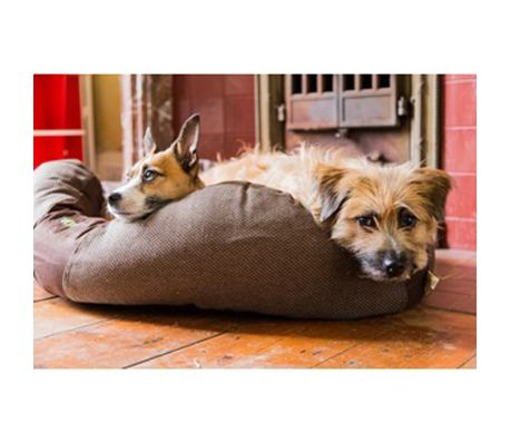 Beco Pets Panier pour chien BecoBed Taille XS 46x37x13 cm Marron 1565[5/6]