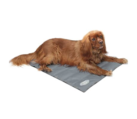 Scruffs & Tramps Tapete refrescante para cães cinzento tamanho M 2717