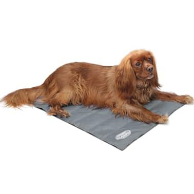 Scruffs & Tramps Tapete refrescante para cães cinzento tamanho M 2717[2/2]