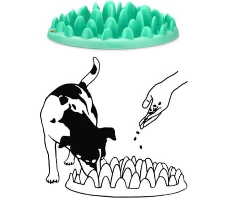 Northmate Mangeoire pour chiens Turquoise 40 x 30 x 10 cm 44078[2/2]
