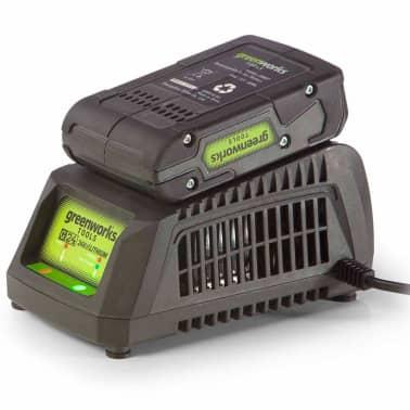Greenworks Batterie G24B2 24 V 2 Ah Li-ion 2902707[6/6]