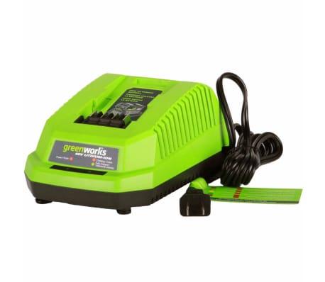 Greenworks Chargeur de batterie universel G40UC 40 V 2,2 A 2910907