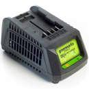 Greenworks Cargador de batería universal G24UC 24 V 2,2 A 2913907