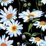 PIXIE DESIGN Servett Daisy 40-pack