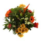 Choice of Green - 1 Bouquet Kim Oranje Large