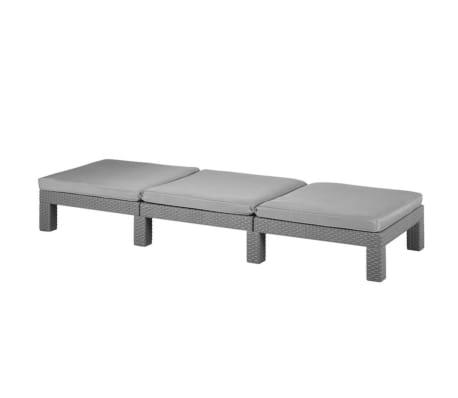 acheter allibert chaise longue daytona graphite 213720 pas cher. Black Bedroom Furniture Sets. Home Design Ideas