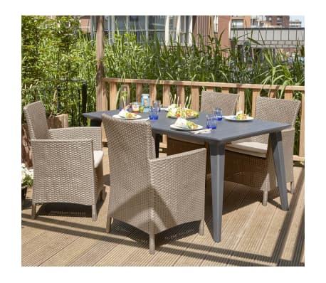 acheter allibert chaise de salle manger de jardin iowa cappuccino pas cher. Black Bedroom Furniture Sets. Home Design Ideas