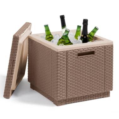 Allibert Chladiaci box, farba cappuccino 223761[2/4]