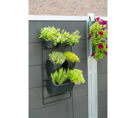 nature vertikaler garten 48x84 cm schwarz 6020275 g nstig. Black Bedroom Furniture Sets. Home Design Ideas