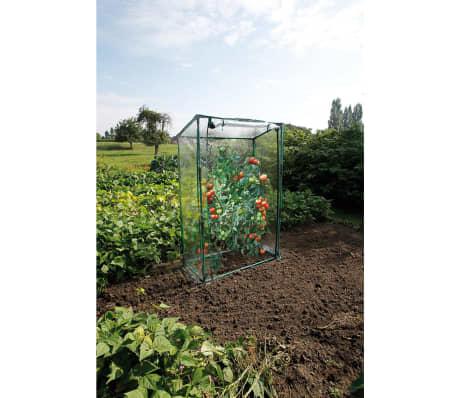 acheter serre de tomate nature 100 x 50 x 150 cm 6020401 pas cher. Black Bedroom Furniture Sets. Home Design Ideas