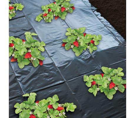 Nature Feuille de paillis pour fraises 1,4 x 20 m 6030231[3/4]