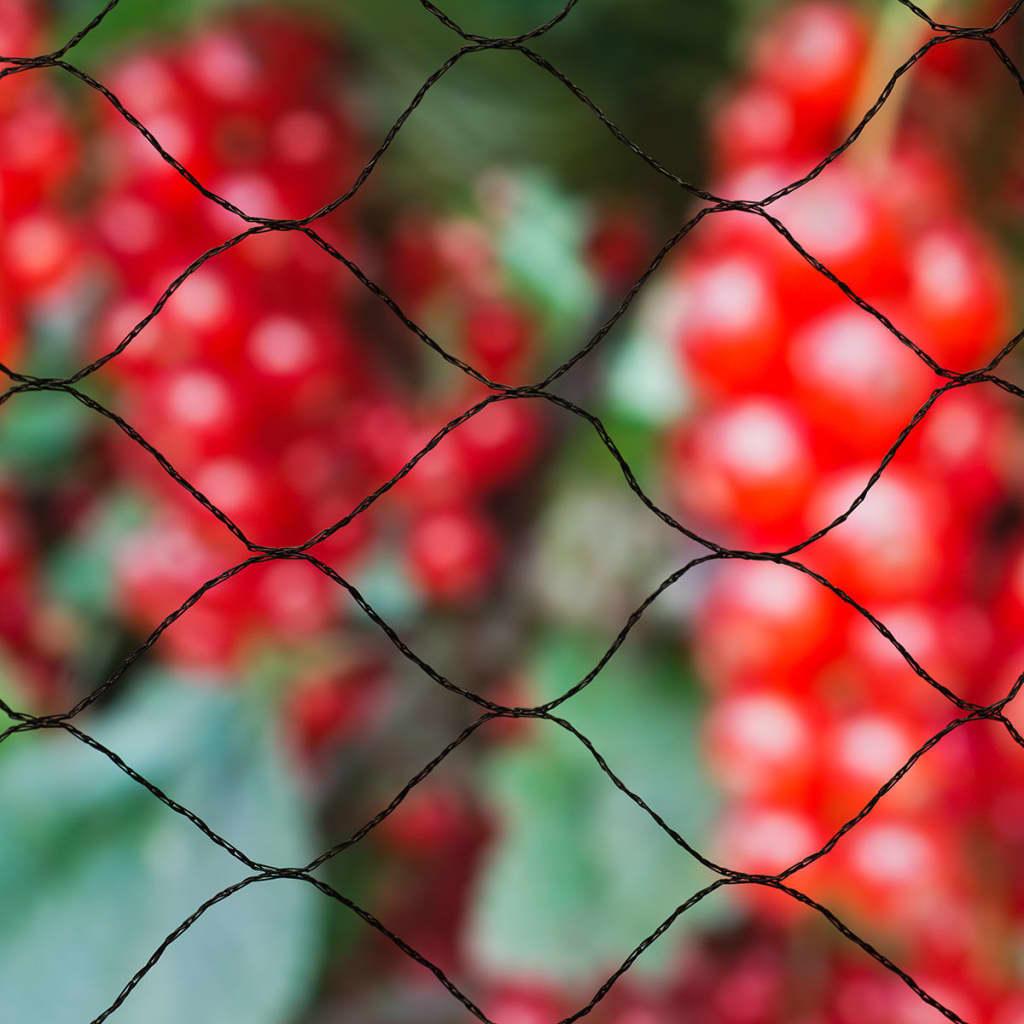 Nature Vogelnet Primo 10x10 m zwart 6030407