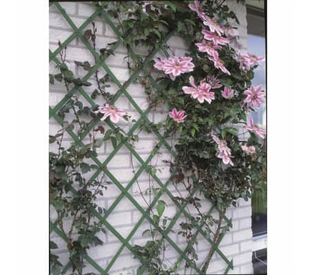 Nature Tuinlatwerk 50x150 cm PVC groen 6040702[2/4]